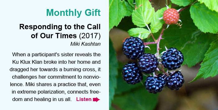 Monthly Gift. Responding to the Call of Our Times (2017). Miki Kashtan. When a participant's sister reveals the Ku Klux Klan broke into her home and dragged her towards a burning cross, it challenges her commitment to nonviolence. Miki shares a practice that, even in extreme polarization, connects freedom and healing in us all. Listen.