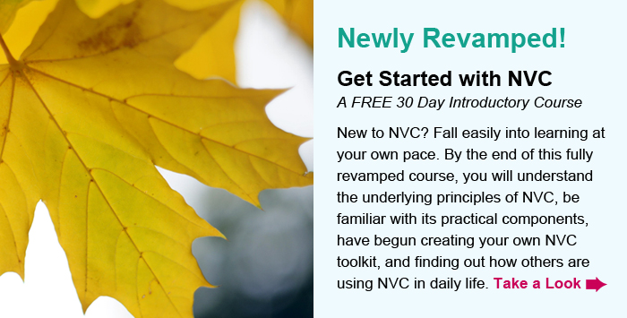 Newly Revamped! Get Started with NVC, A FREE 30 Day Introductory Course. New to NVC? Fall easily into learning at your own pace. By the end of this fully revamped course, you will understand the underlying principles of NVC, be familiar with its practical components, have begun creating your own NVC toolkit, and finding out how others are using NVC in daily life! Take a Look.