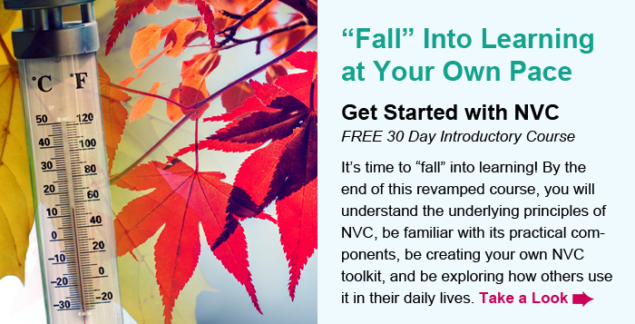 """""""Fall"""" Into Learning at Your Own Pace. Get Started with NVC. FREE 30 Day Introductory Course. It's time to """"fall"""" into learning! By the end of this revamped course, you will understand the underlying principles of NVC, be familiar with its practical components, be creating your own NVC toolkit, and be exploring how others use it in their daily lives. Take a Look."""