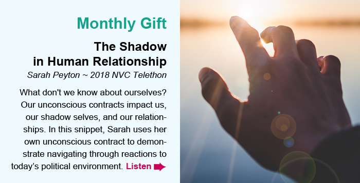 Monthly Gift. The Shadow in Human Relationship. Sarah Peyton ~ NVCfest 2019 Session. What don't we know about ourselves? Our unconscious contracts impact us, our shadow selves, and our relationships. In this snippet, Sarah uses her own unconscious contract to demonstrate navigating through reactions to today's political environment. Listen.