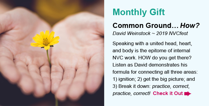 Monthly Gift. Common Ground…How? David Weinstock ~ 2019 NVCfest. Speaking with a united head, heart, and body is the epitome of internal NVC work. HOW do you get there? Listen as David demonstrates his formula for connecting all three areas: 1) ignition; 2) get the big picture; and 3) Break it down: practice, correct, practice, correct! Check it Out.
