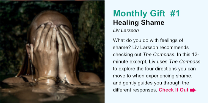 Monthly Gift  #1. Healing Shame. Liv Larsson. What do you do with feelings of shame? During this 12-minute excerpt from her course, From Shame to Vulnerability, Liv Larsson uses The Compass to explore the four directions you can move to when experiencing shame, and guides you through the different responses. Check It Out.