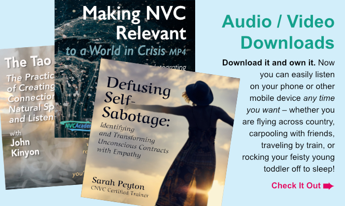 Audio / Video Downloads. Download it and own it. Now you can easily listen on your phone or other mobile device any time you want – whether you are flying across country, carpooling with friends, traveling by train, or rocking your feisty young toddler off to sleep! Check It Out.