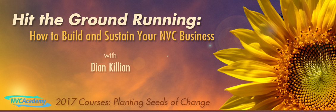Hit the Ground Running:  How to Build and Sustain your NVC Business
