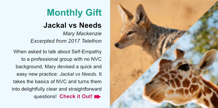 Monthly Gift. Jackal vs Needs. Mary Mackenzie. Excerpted from 2017 Telethon. When asked to talk about Self-Empathy to a professional group with no NVC background, Mary devised a quick and easy new practice: Jackal vs Needs. It takes the basics of NVC and turns them into delightfully clear and straightforward questions! Check it Out.