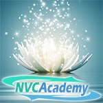 2020 Online NVC Conference